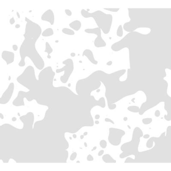 Citadel Texture Paint - Valhallan Blizzard 24ml