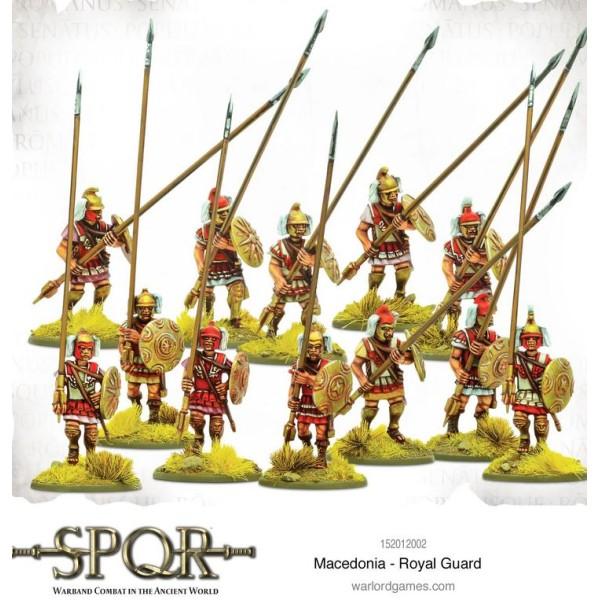 SPQR - Warband Combat in the Ancient World - Macedonia - Royal Guard