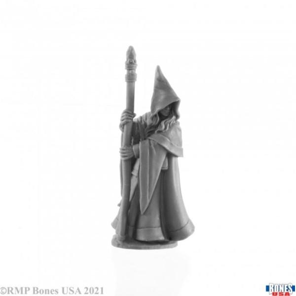 Reaper - Bones USA - Anirion, Elf Wizard