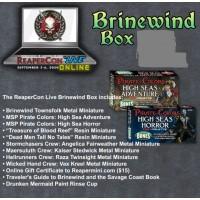 Reaper - Reapercon 2020 - Brinewind Box