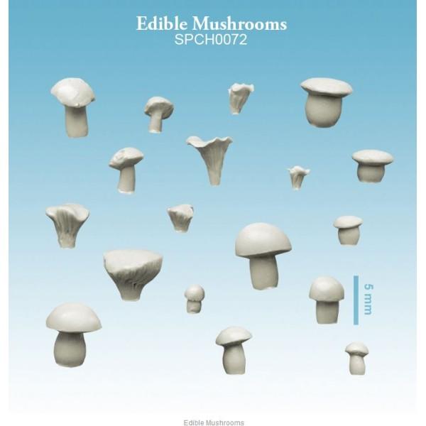 Spellcrow - 28mm Fantasy: Edible Mushrooms