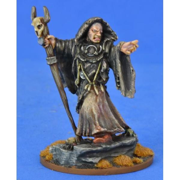 Saga - Pagan Priest 3 - The Seer