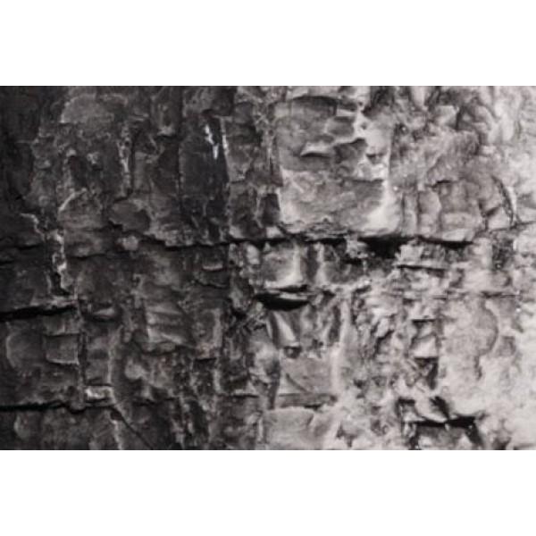 Woodland Scenics - Terrian Paint - Black