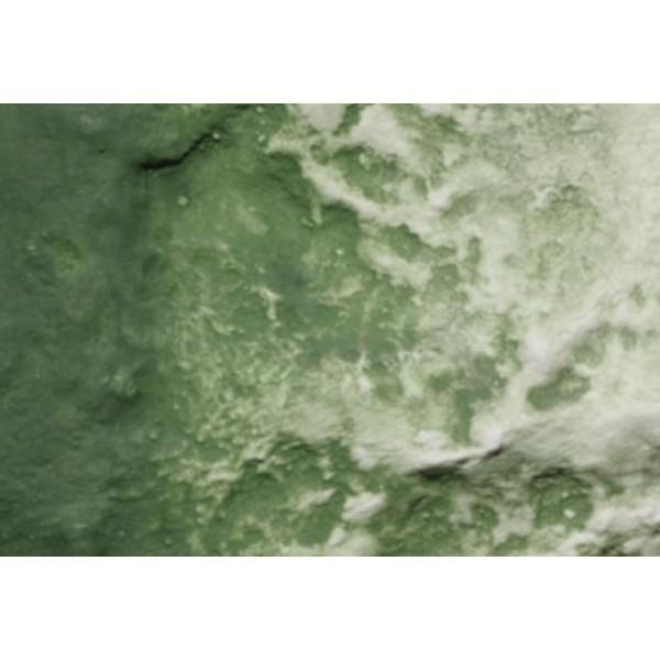 Woodland Scenics - Terrian Paint - Green Undercoat