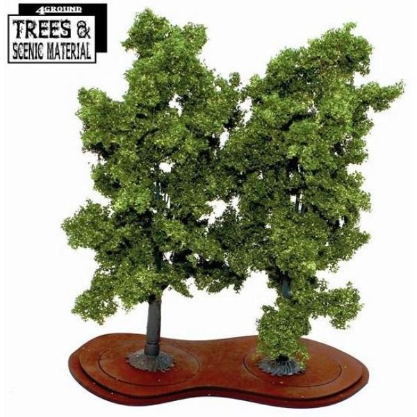 4Ground Trees - Mature Beech Trees (2)