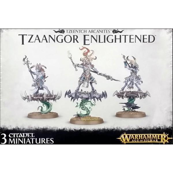 Age of Sigmar - Tzeentch Arcanites - Tzaangor Enlightened