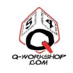 Q-Workshop Dice