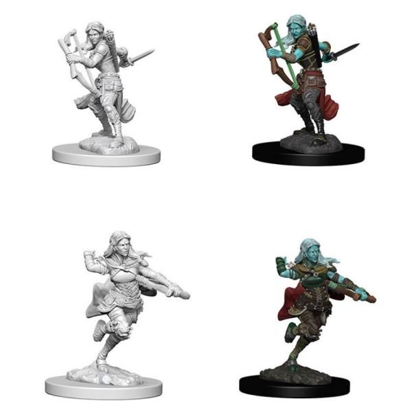 D&D - Nolzur's Marvelous Unpainted Minis: Air Genasi Female Rogue