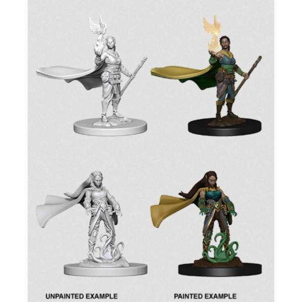 D&D - Nolzur's Marvelous Unpainted Minis: Elf Female Druid