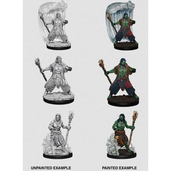 D&D - Nolzur's Marvelous Unpainted Minis: Water Genasi Male Druid
