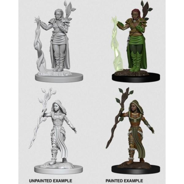 D&D - Nolzur's Marvelous Unpainted Minis: Human Female Druid