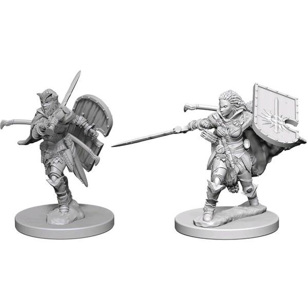 Pathfinder - Deep Cuts Unpainted Miniatures: Human Female Paladin