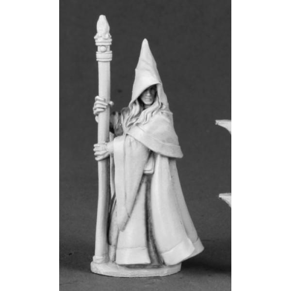 Reaper - Dark Heaven Legends - Anirion, Wood Elf Wizard