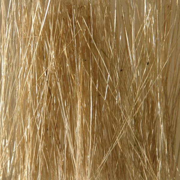 Ziterdes - Reed/Field Grass - Beige